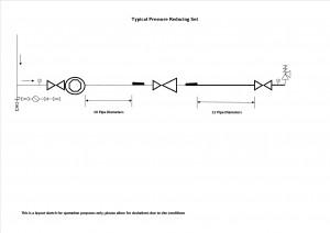 TLV COS-R Pressure Reducing Valves